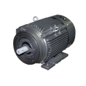 1HP Motor-3PH-3600RPM-TEFC-CF